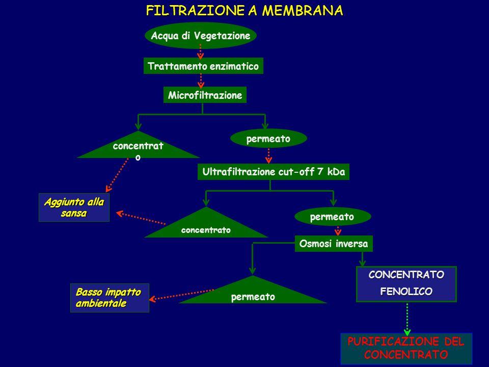 FILTRAZIONE A MEMBRANA Acqua di Vegetazione Microfiltrazione Ultrafiltrazione cut-off 7 kDa Osmosi inversa permeato CONCENTRATOFENOLICO concentrat o permeato concentrato Aggiunto alla sansa Basso impatto ambientale PURIFICAZIONE DEL CONCENTRATO Trattamento enzimatico