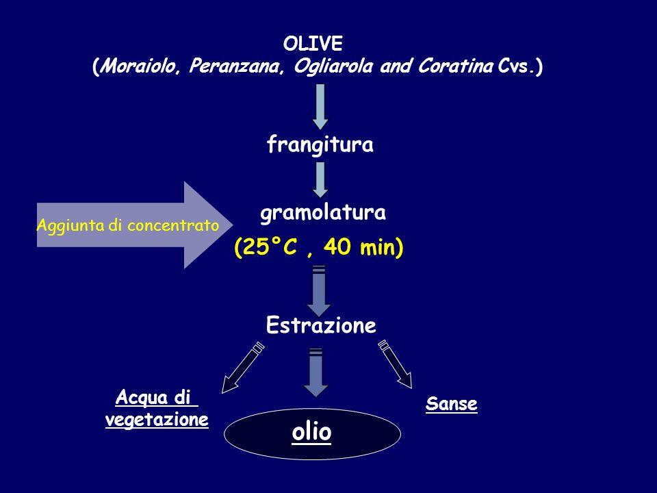 olio Sanse Acqua di vegetazione Estrazione gramolatura OLIVE (Moraiolo, Peranzana, Ogliarola and Coratina Cvs.) frangitura (25°C, 40 min) Aggiunta di concentrato