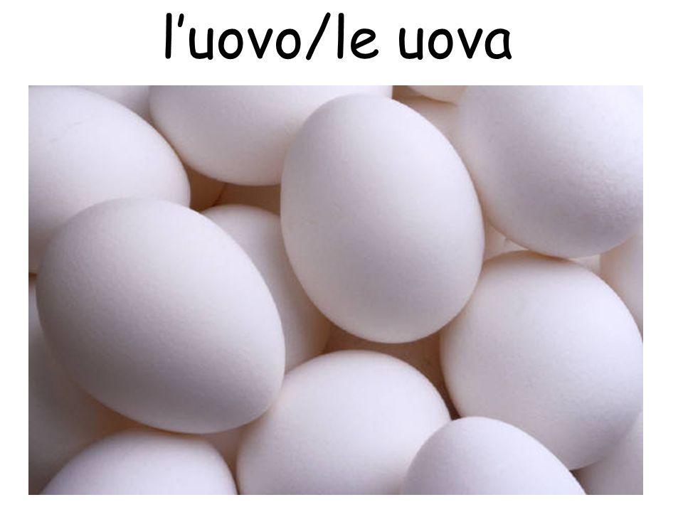 luovo/le uova