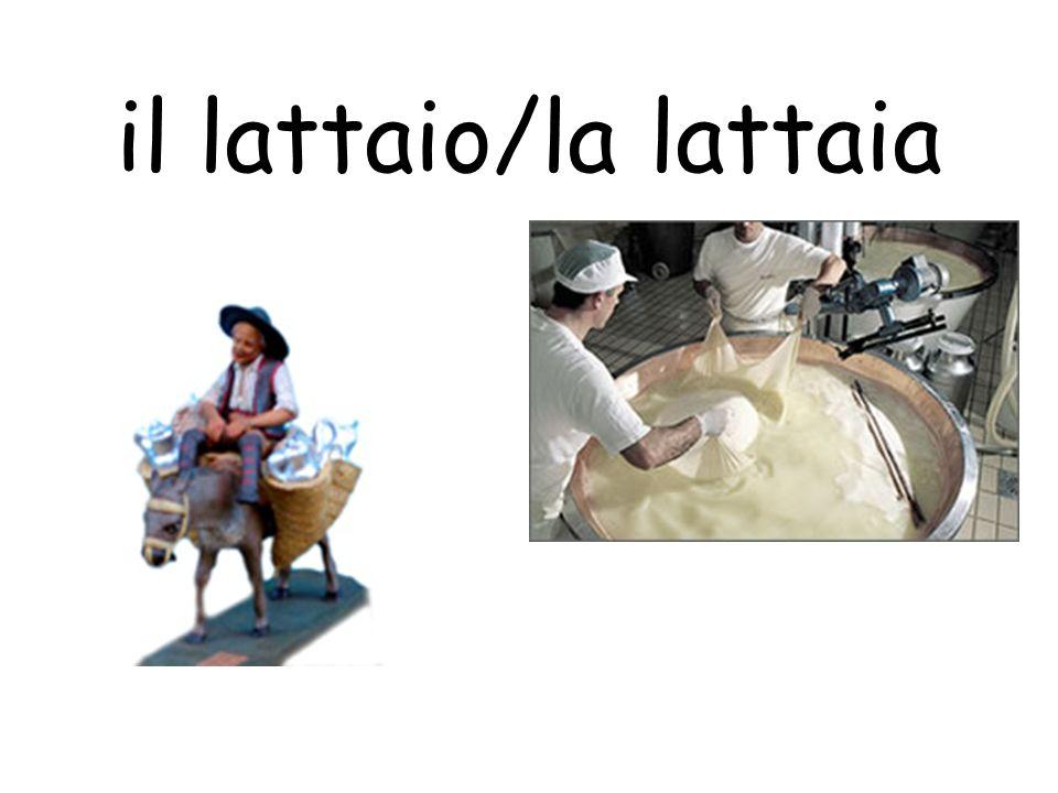 il lattaio/la lattaia