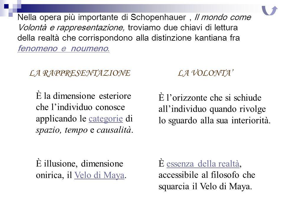 Nella opera più importante di Schopenhauer, Il mondo come Volontà e rappresentazione, troviamo due chiavi di lettura della realtà che corrispondono al