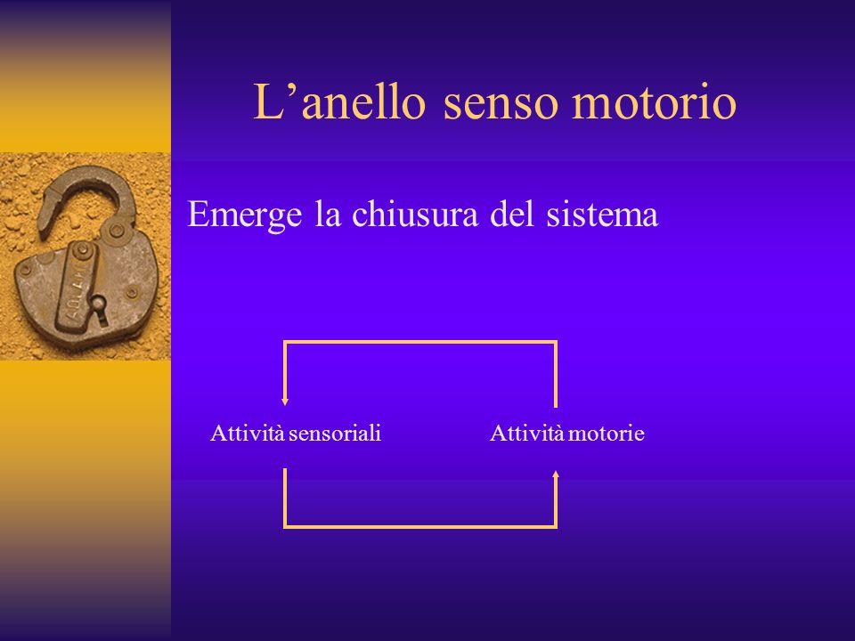Lanello senso motorio Emerge la chiusura del sistema Attività sensorialiAttività motorie