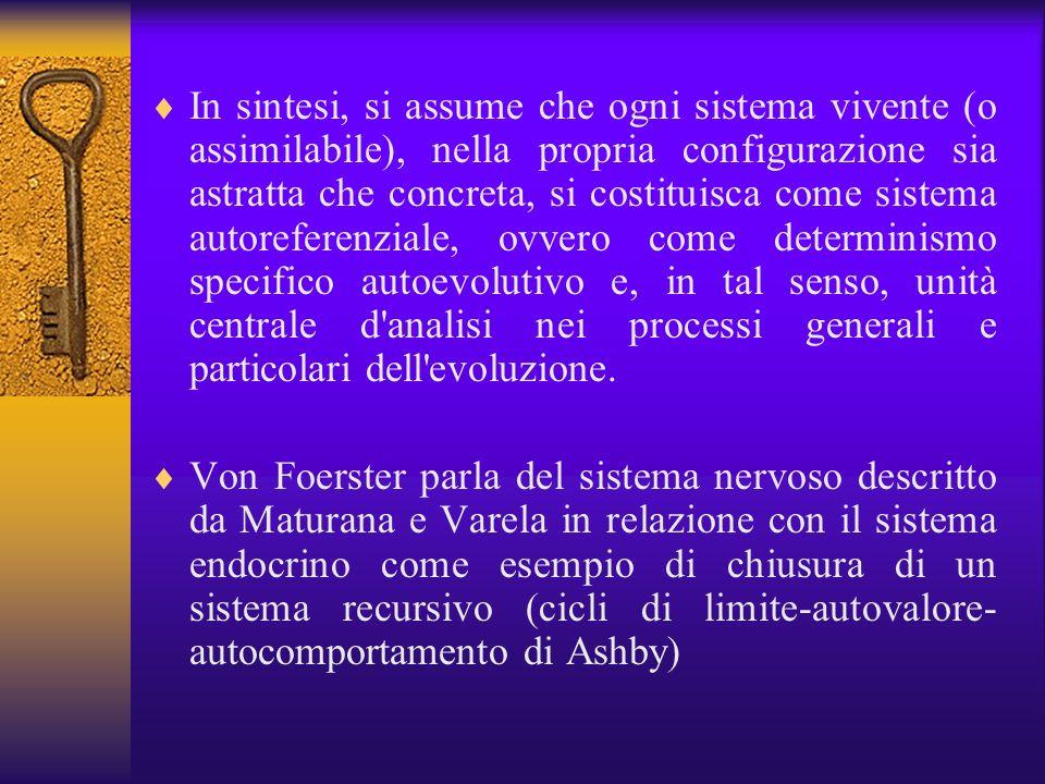 In sintesi, si assume che ogni sistema vivente (o assimilabile), nella propria configurazione sia astratta che concreta, si costituisca come sistema a