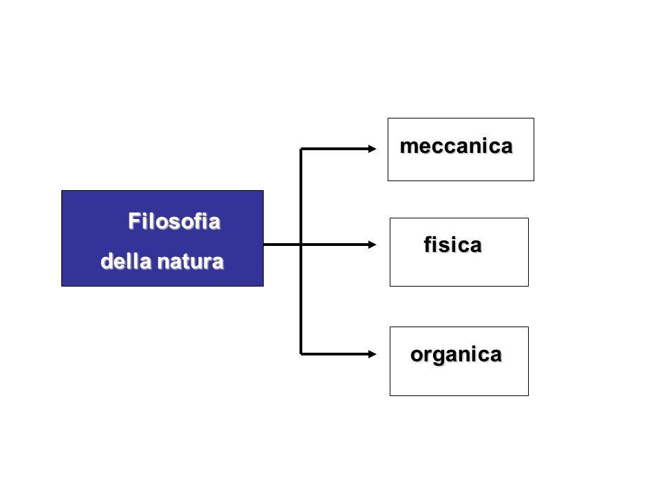 Filosofia Filosofia della natura organica fisica fisica meccanica