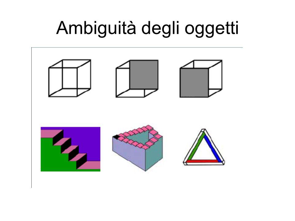 Ambiguità degli oggetti