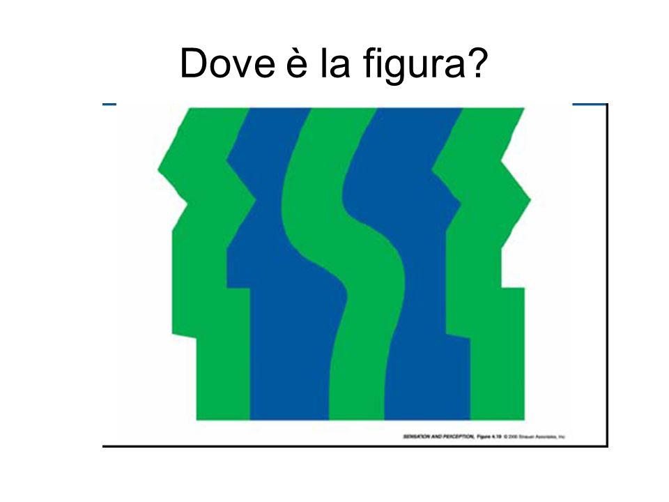 Dove è la figura?