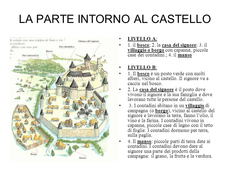 LA PARTE INTORNO AL CASTELLO LIVELLO A: 1.il bosco; 2.