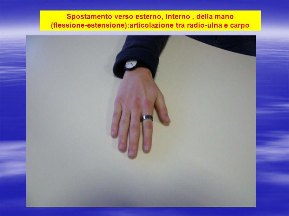 Spostamento verso esterno, interno, della mano (flessione-estensione):articolazione tra radio-ulna e carpo