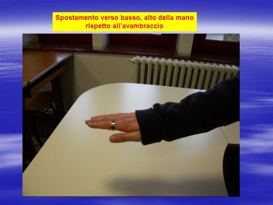 Rotazione della mano( destra) palmo verso il basso,pollice verso sinistra palmo verso destra, pollice verso il basso palmo verso sinistra, pollice verso alto palmo verso alto, pollice verso destra lato palmarelato dorsale radio ulna palmo verso il basso,pollice verso sinistra palmo verso destra, pollice verso il basso palmo verso sinistra, pollice verso alto palmo verso alto, pollice verso destra