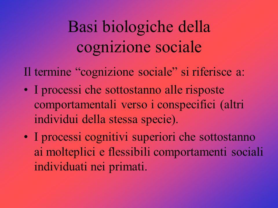 Basi biologiche della cognizione sociale Il termine cognizione sociale si riferisce a: I processi che sottostanno alle risposte comportamentali verso