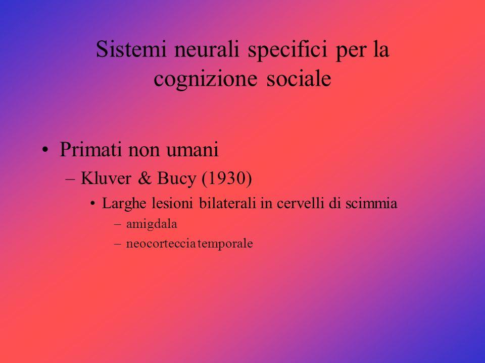 Sistemi neurali specifici per la cognizione sociale Primati non umani –Kluver & Bucy (1930) Larghe lesioni bilaterali in cervelli di scimmia –amigdala