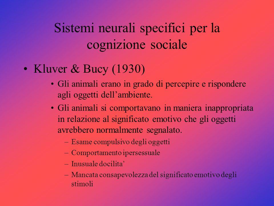 Sistemi neurali specifici per la cognizione sociale Kluver & Bucy (1930) Gli animali erano in grado di percepire e rispondere agli oggetti dellambient