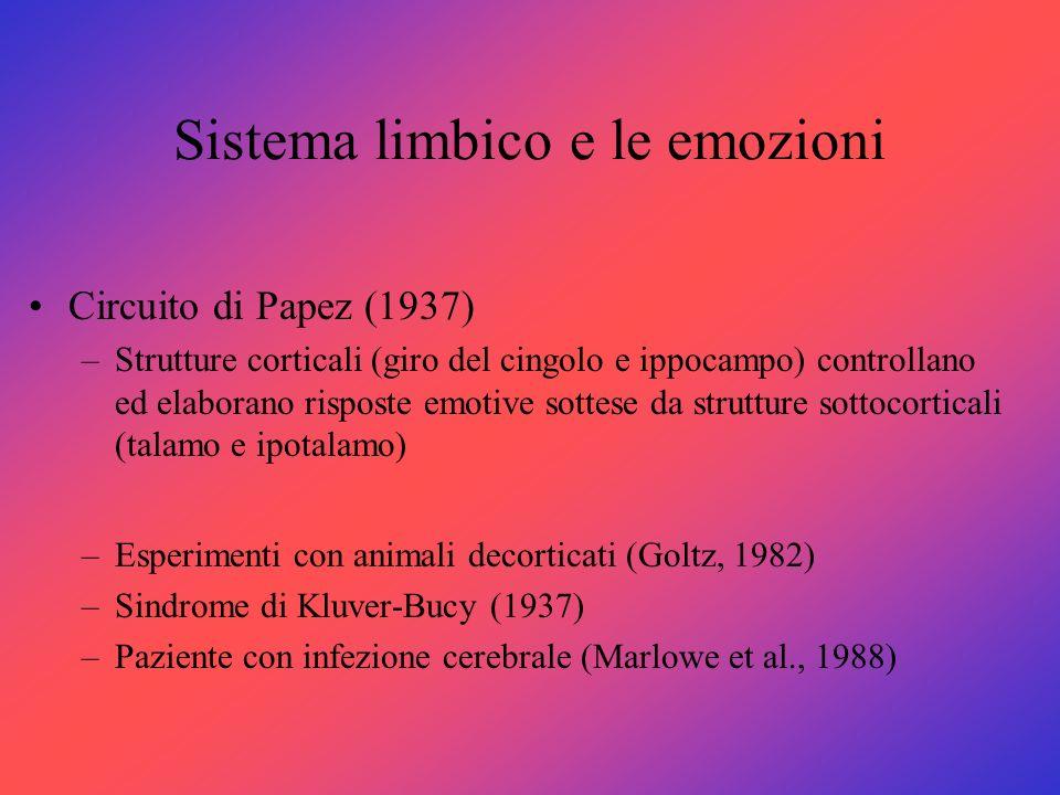 Sistema limbico e le emozioni Circuito di Papez (1937) –Strutture corticali (giro del cingolo e ippocampo) controllano ed elaborano risposte emotive s