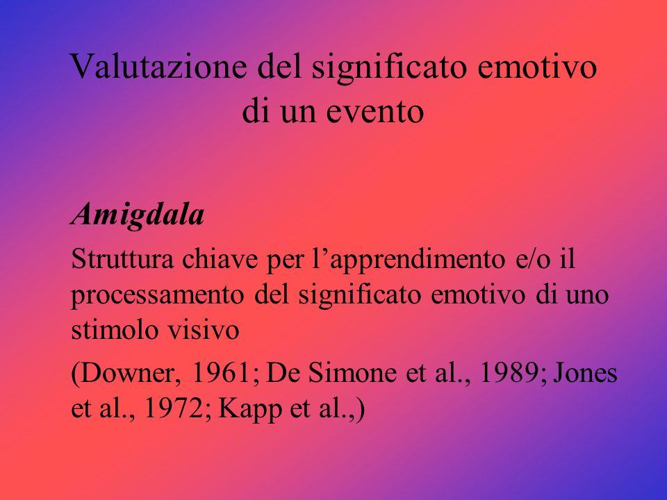 Valutazione del significato emotivo di un evento Amigdala Struttura chiave per lapprendimento e/o il processamento del significato emotivo di uno stim