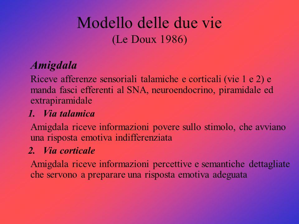 Modello delle due vie (Le Doux 1986) Amigdala Riceve afferenze sensoriali talamiche e corticali (vie 1 e 2) e manda fasci efferenti al SNA, neuroendoc