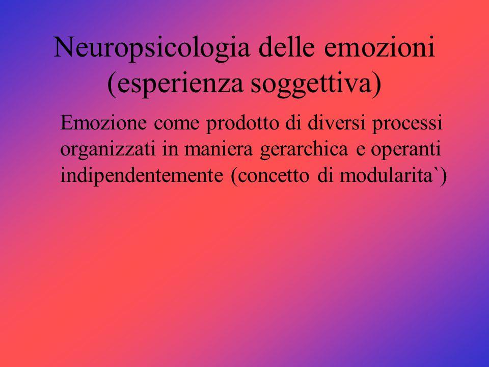 Neuropsicologia delle emozioni (esperienza soggettiva) Emozione come prodotto di diversi processi organizzati in maniera gerarchica e operanti indipen