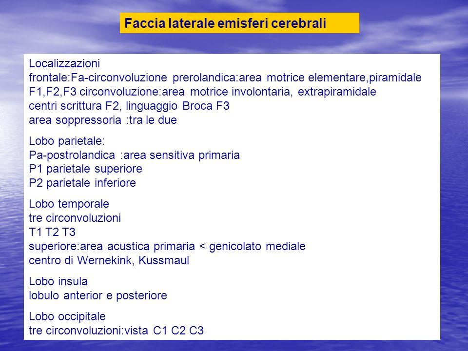 Localizzazioni frontale:Fa-circonvoluzione prerolandica:area motrice elementare,piramidale F1,F2,F3 circonvoluzione:area motrice involontaria, extrapi