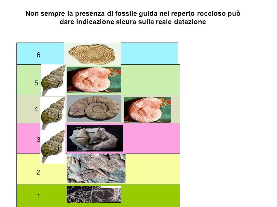 1 2 3 4 5 6 Non sempre la presenza di fossile guida nel reperto roccioso può dare indicazione sicura sulla reale datazione