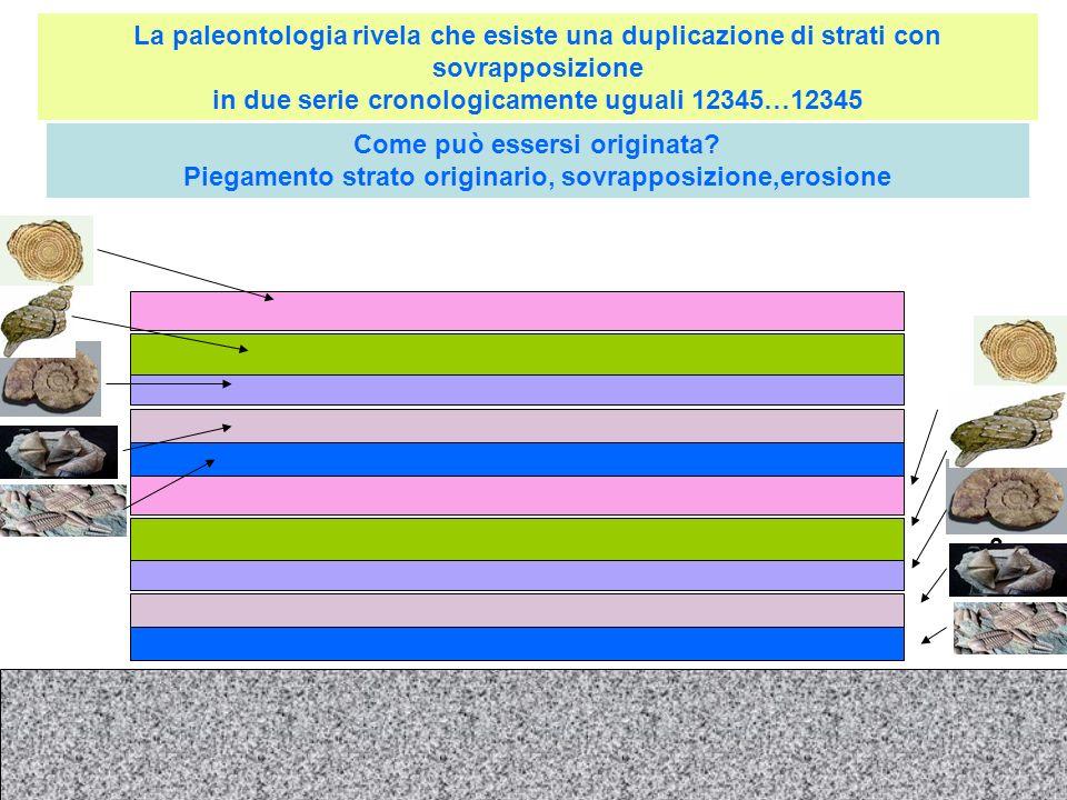 3 La paleontologia rivela che esiste una duplicazione di strati con sovrapposizione in due serie cronologicamente uguali 12345…12345 Come può essersi