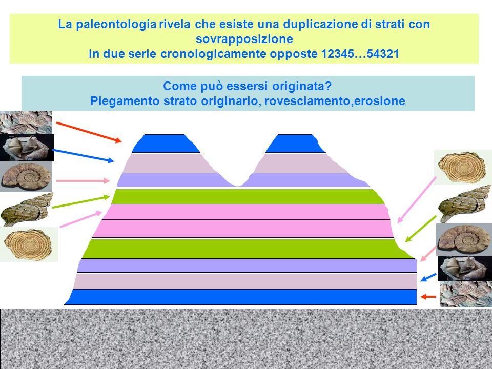 La paleontologia rivela che esiste una duplicazione di strati con sovrapposizione in due serie cronologicamente opposte 12345…54321 Come può essersi o