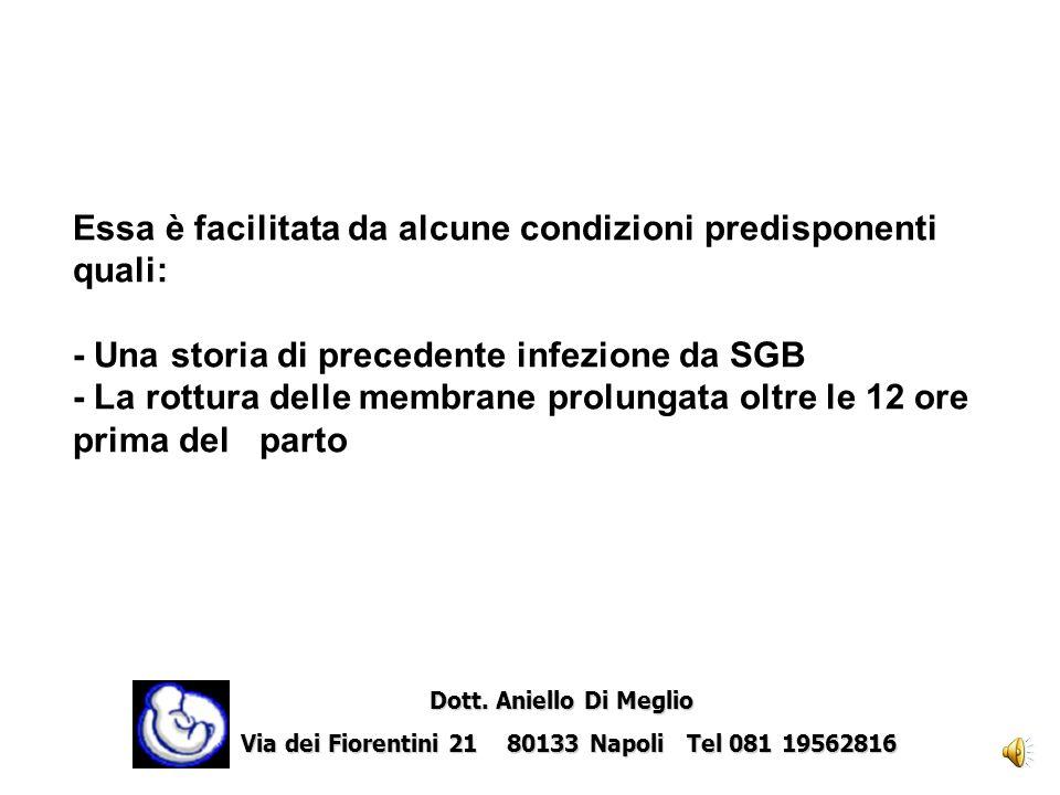 Essa è facilitata da alcune condizioni predisponenti quali: - Una storia di precedente infezione da SGB - La rottura delle membrane prolungata oltre le 12 ore prima del parto Dott.