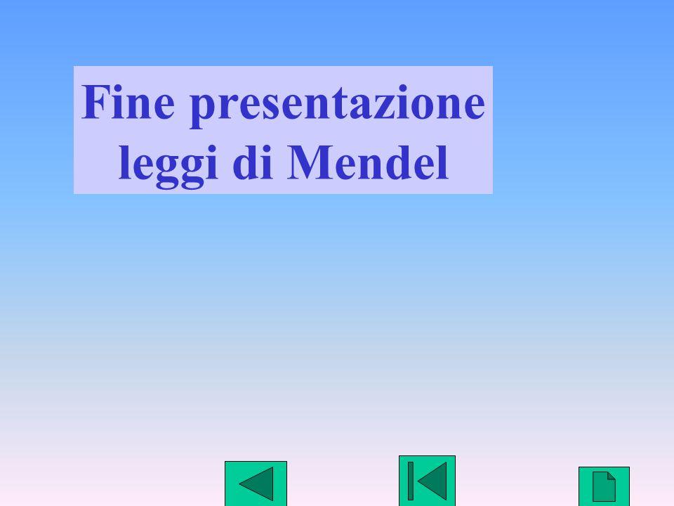27 Fine presentazione leggi di Mendel