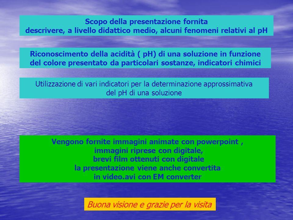 Scopo della presentazione fornita descrivere, a livello didattico medio, alcuni fenomeni relativi al pH Riconoscimento della acidità ( pH) di una solu