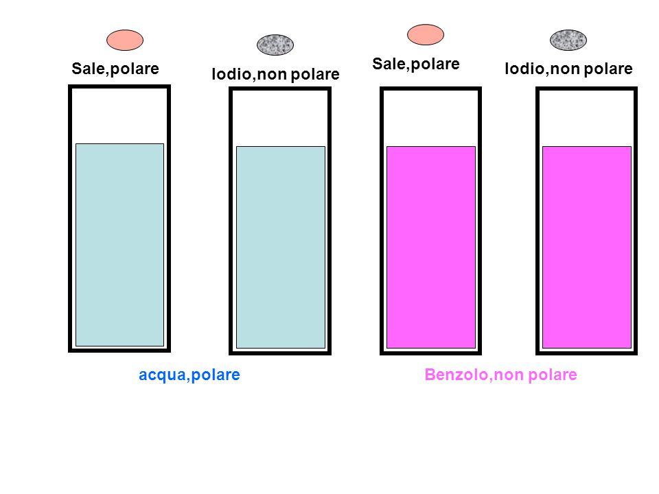 Sale,polare Iodio,non polare acqua,polareBenzolo,non polare Iodio,non polare Sale,polare