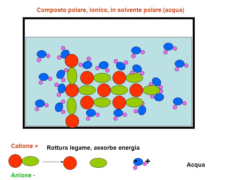 Composto polare, ionico, in solvente polare (acqua) Catione + Anione - Acqua - + Rottura legame, assorbe energia