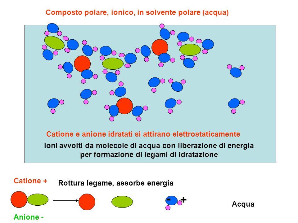 Composto polare, ionico, in solvente polare (acqua) Catione + Anione - Acqua - + Rottura legame, assorbe energia Ioni avvolti da molecole di acqua con