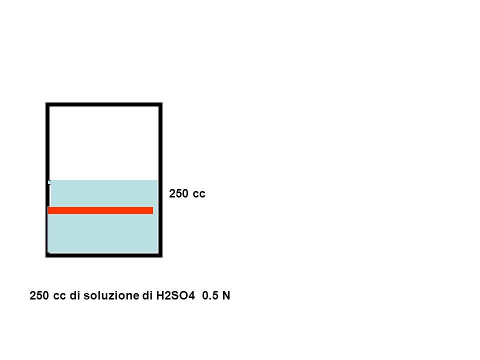 250 cc 250 cc di soluzione di H2SO4 0.5 N