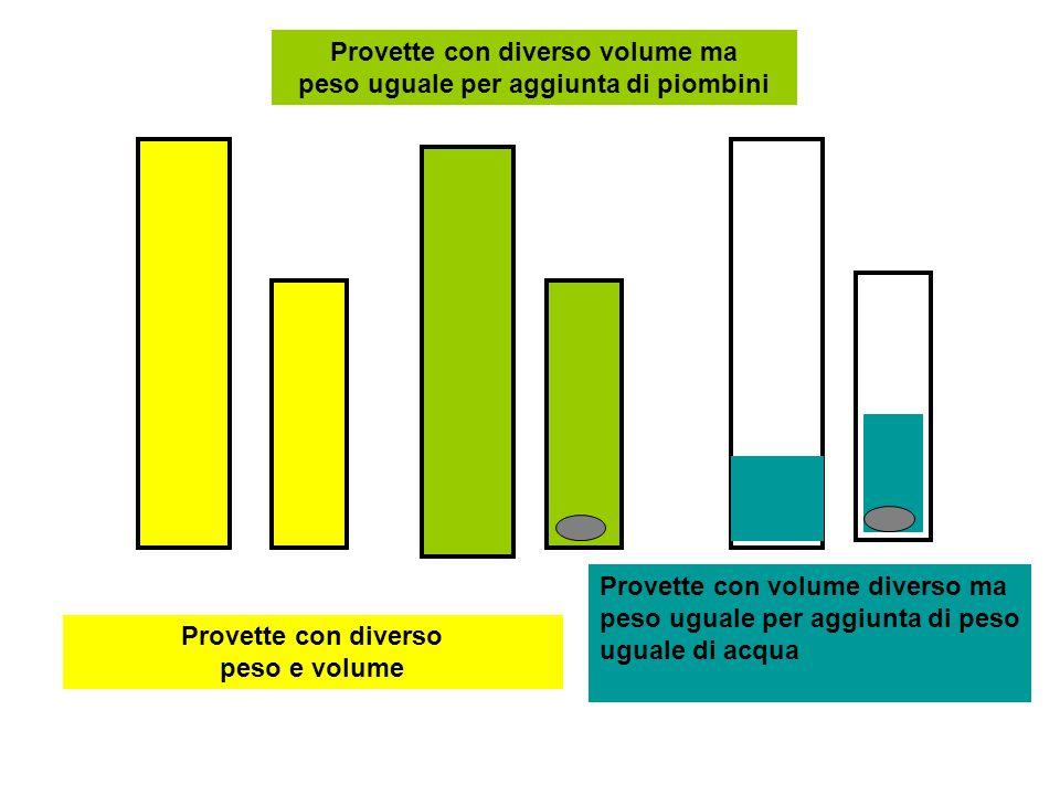 Provette con diverso peso e volume Provette con diverso volume ma peso uguale per aggiunta di piombini Provette con volume diverso ma peso uguale per