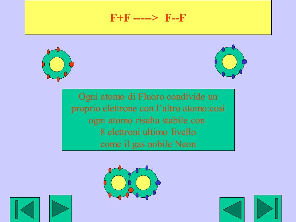 F+F -----> F--F Ogni atomo di Fluoro condivide un proprio elettrone con laltro atomo:così ogni atomo risulta stabile con 8 elettroni ultimo livello co