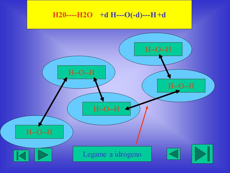 H20----H2O +d H---O(-d)---H +d H--O--H Legame a idrogeno