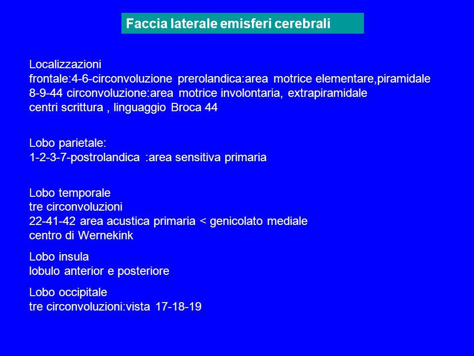 Localizzazioni frontale:4-6-circonvoluzione prerolandica:area motrice elementare,piramidale 8-9-44 circonvoluzione:area motrice involontaria, extrapir