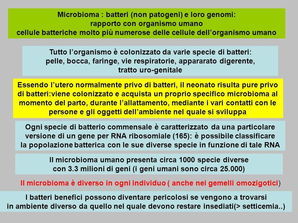 Microbioma : batteri (non patogeni) e loro genomi: rapporto con organismo umano cellule batteriche molto più numerose delle cellule dellorganismo uman