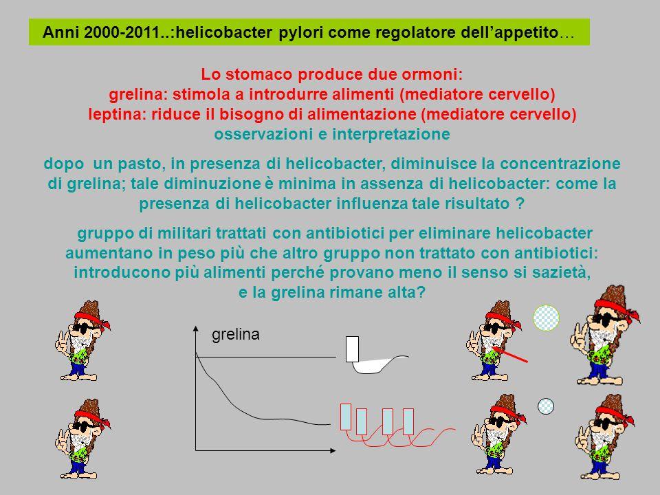 Anni 2000-2011..:helicobacter pylori come regolatore dellappetito… Lo stomaco produce due ormoni: grelina: stimola a introdurre alimenti (mediatore ce