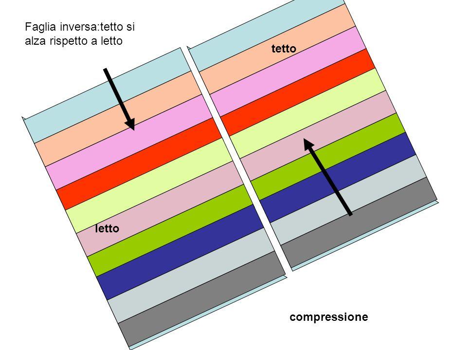 Faglia inversa:tetto si alza rispetto a letto tetto letto compressione