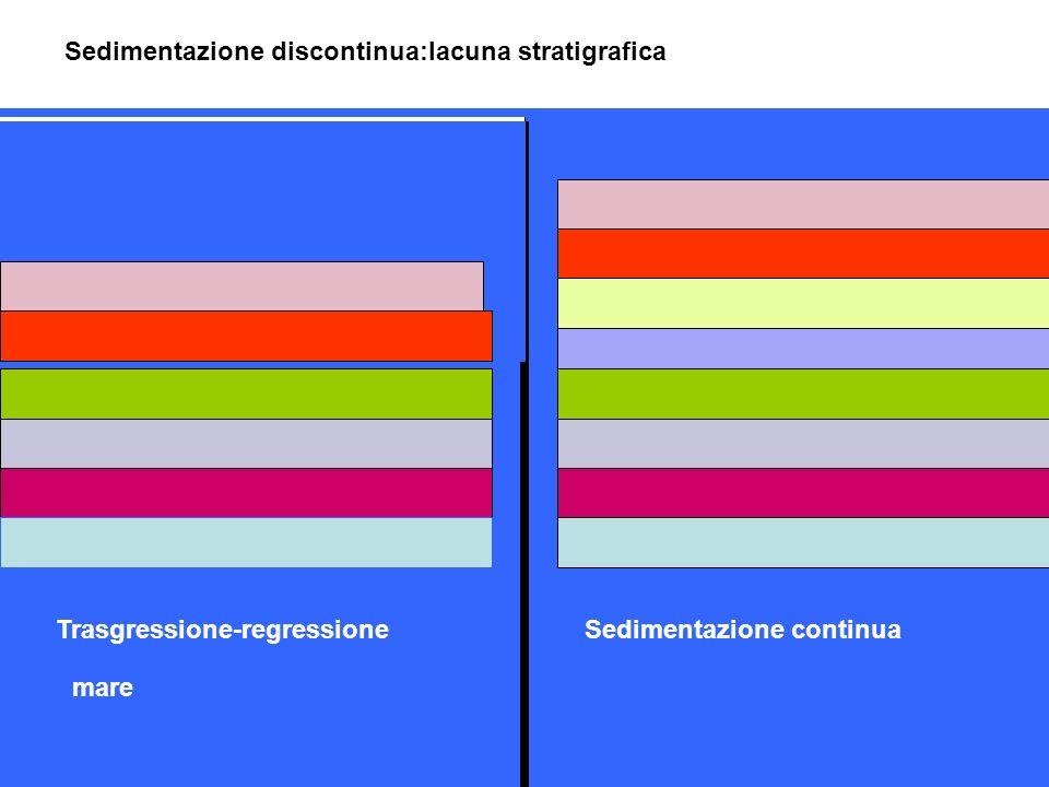 mare Sedimentazione discontinua:lacuna stratigrafica Sedimentazione continuaTrasgressione-regressione