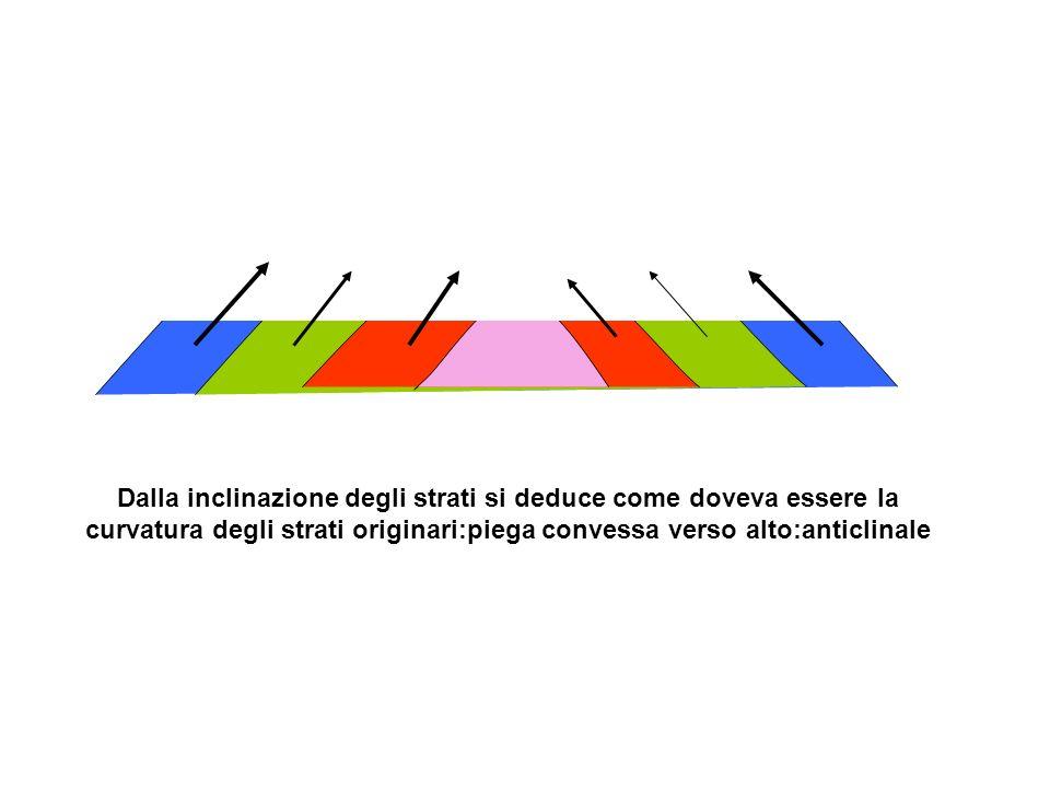 Dalla inclinazione degli strati si deduce come doveva essere la curvatura degli strati originari:piega convessa verso alto:anticlinale