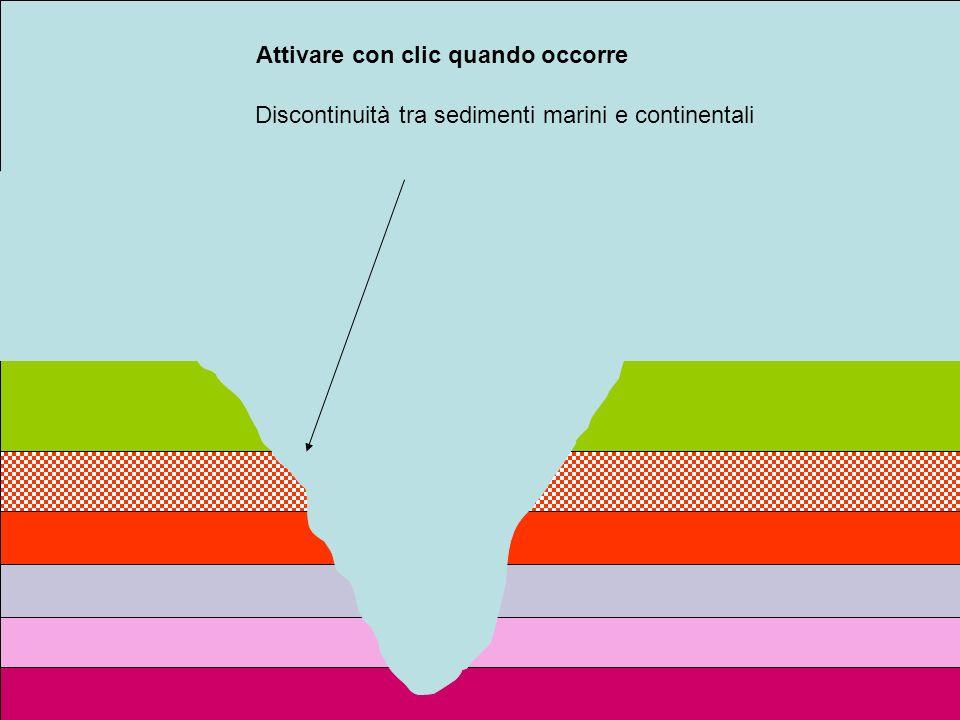 Attivare con clic quando occorre Discontinuità tra sedimenti marini e continentali