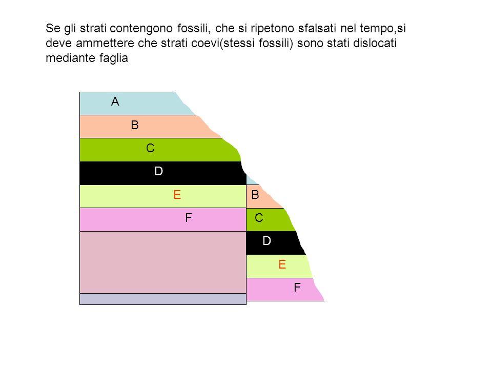 Serie stratigrafica continua: terreno sempre sotto il livello del mare Livello del mare a b c d e f g h Gli strati si depositano in successione regolare dai più antichi (a) ai più recenti (h):in A mentre in B mancano gli strati corrispondenti a (e-f-g) segno che in quel periodo il terreno risultava emerso:poi ritorna sotto il livello del mare e si deposita lo strato corrispondente (h) A B