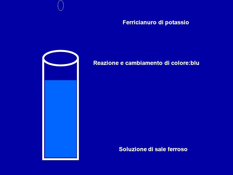 Soluzione di sale ferroso Ferricianuro di potassio Reazione e cambiamento di colore:blu