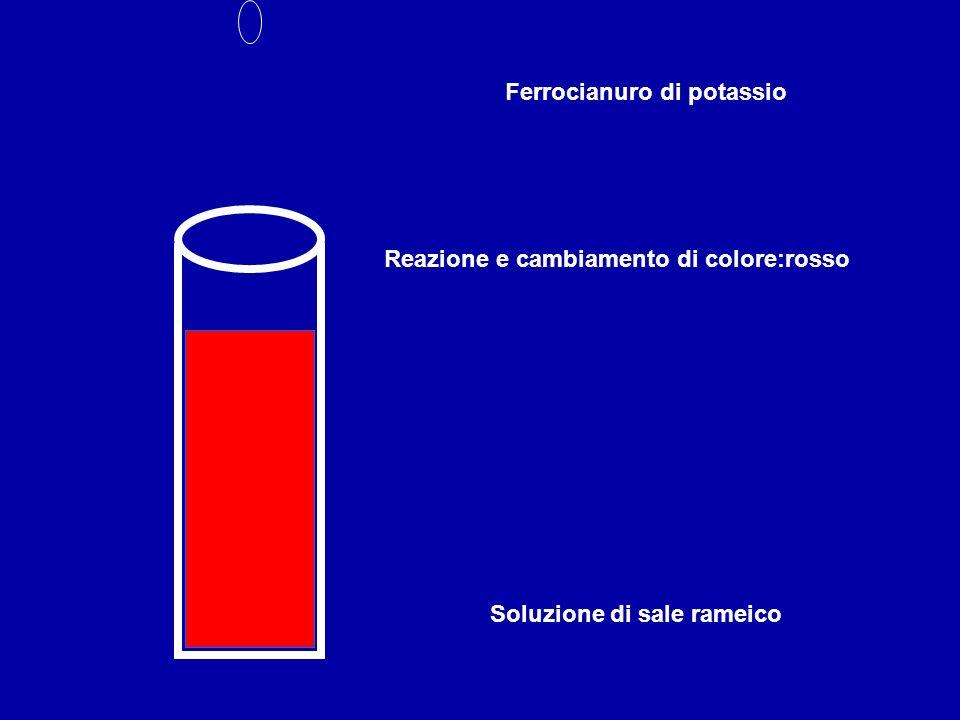 Soluzione di sale rameico Ferrocianuro di potassio Reazione e cambiamento di colore:rosso