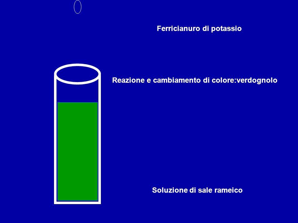 Soluzione di sale rameico Ferricianuro di potassio Reazione e cambiamento di colore:verdognolo