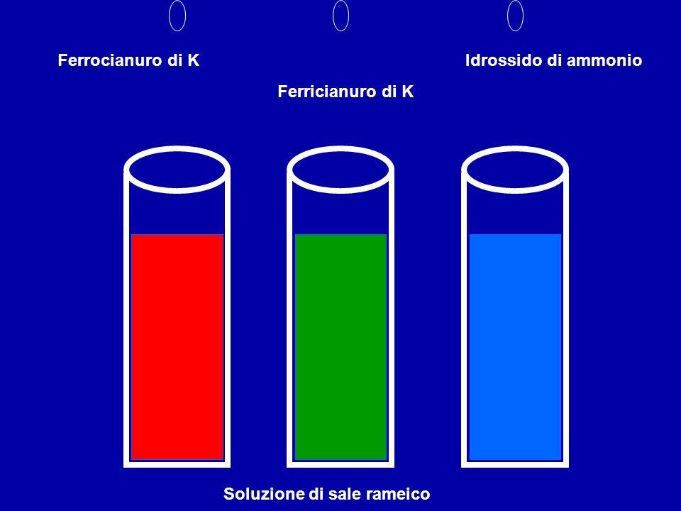 Soluzione di sale rameico Ferrocianuro di K Ferricianuro di K Idrossido di ammonio