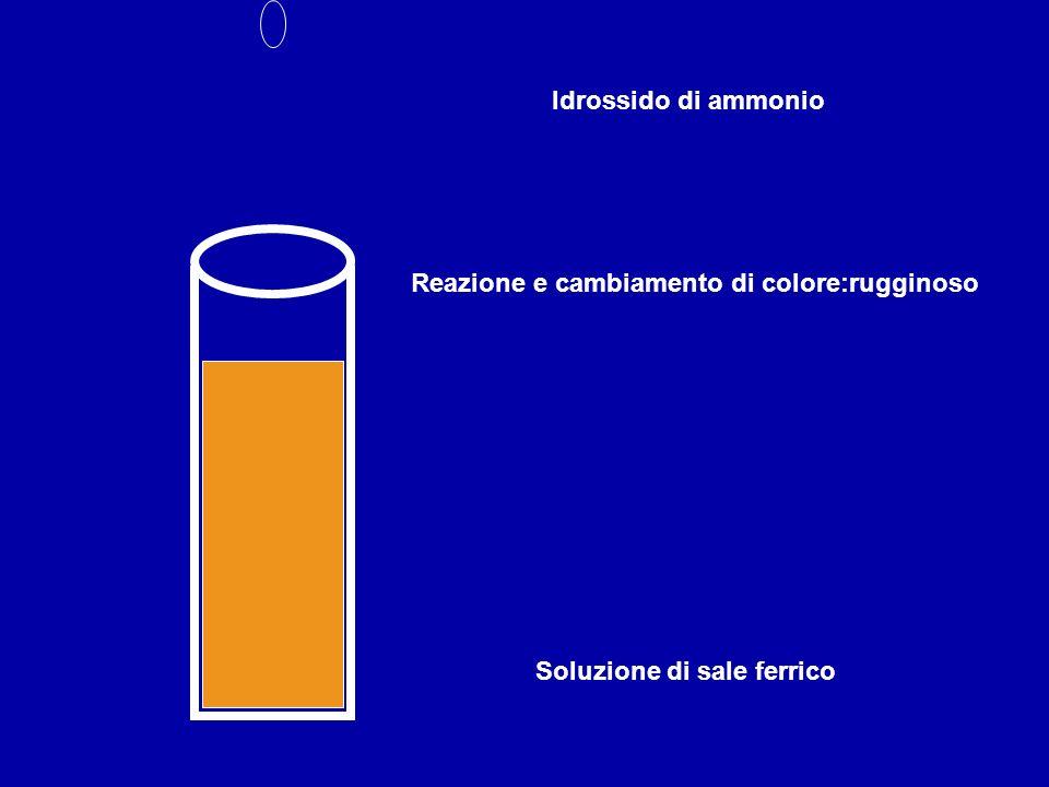 Soluzione di sale ferrico Idrossido di ammonio Reazione e cambiamento di colore:rugginoso