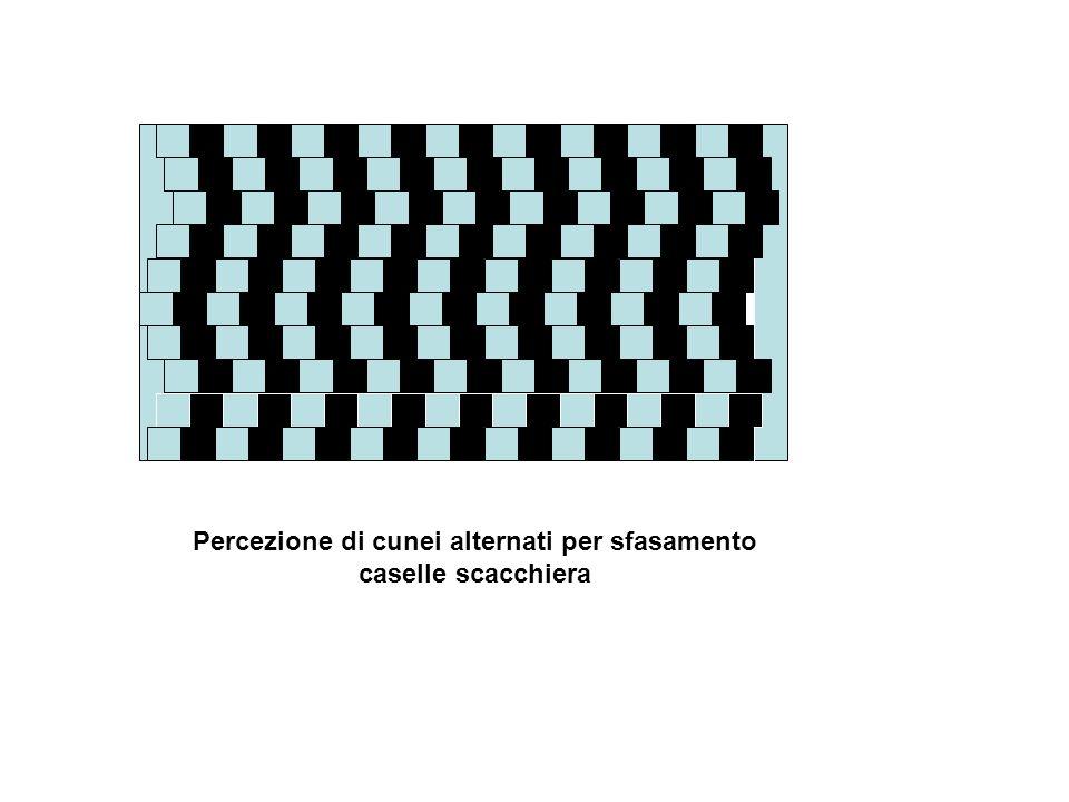 Percezione di cunei alternati per sfasamento caselle scacchiera