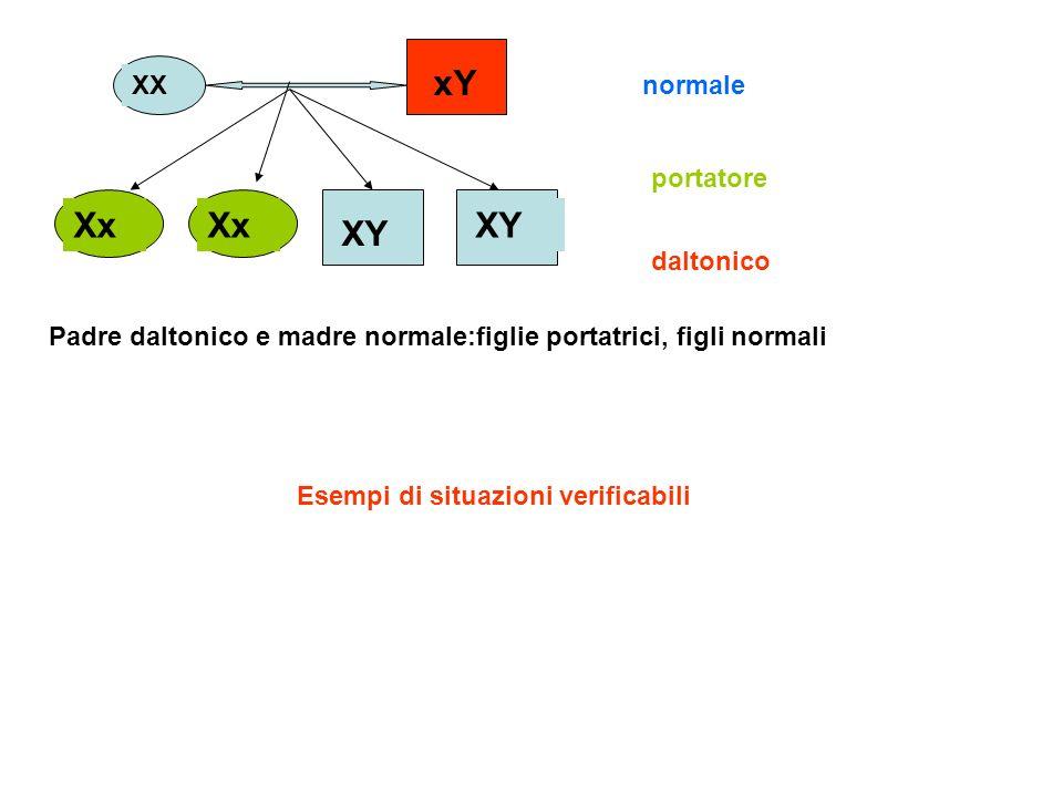 XX xY Xx XY normale daltonico portatore Padre daltonico e madre normale:figlie portatrici, figli normali Esempi di situazioni verificabili