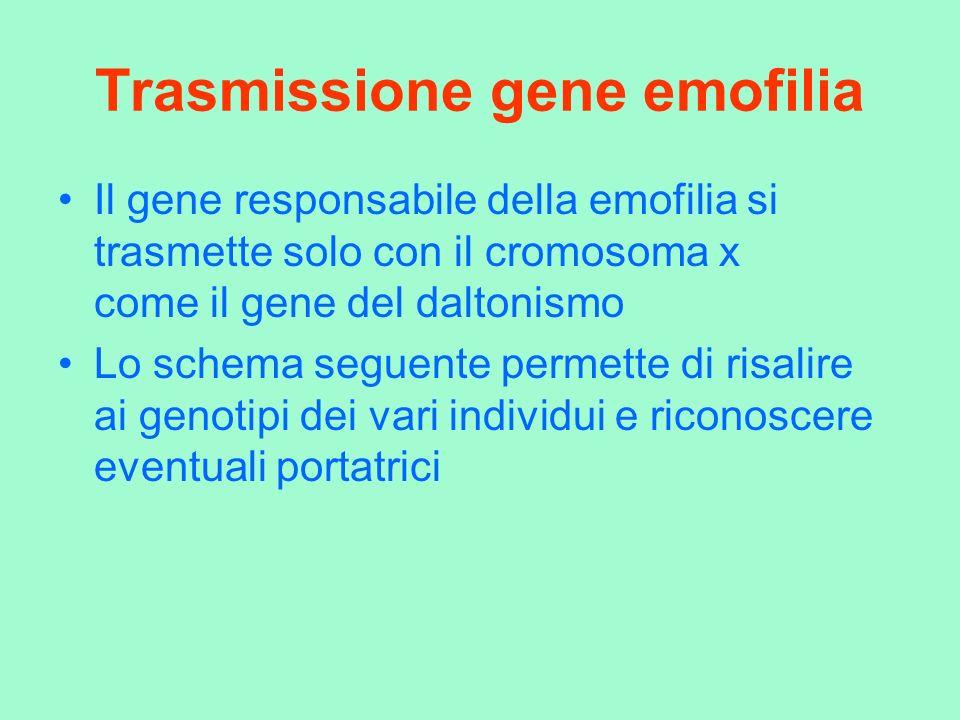 Trasmissione gene emofilia Il gene responsabile della emofilia si trasmette solo con il cromosoma x come il gene del daltonismo Lo schema seguente per